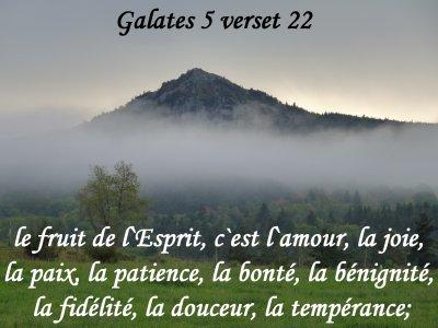 Préférence Images avec verset biblique - Page 13 JK51
