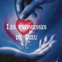 Promesses bibliques - Verset biblique consolation ...